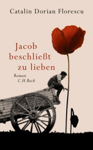 Das Cover des neuen Buches von Catalin Dorian Florescu