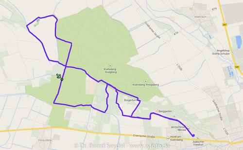 Meine Laufstrecke am Silvesternachmittag in Gotha.